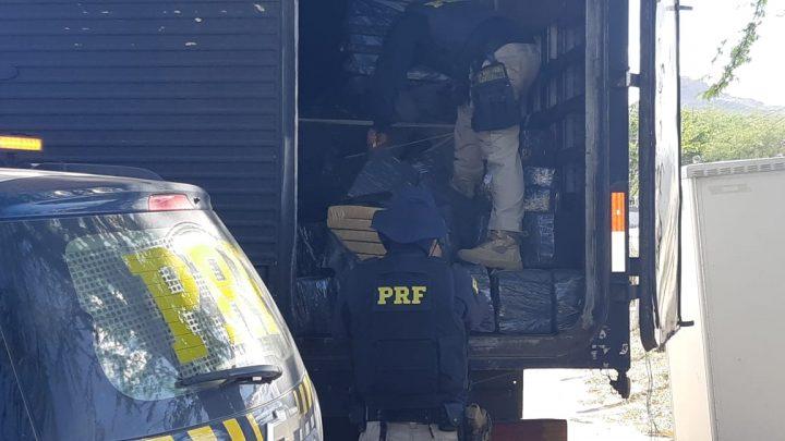Caminhão baú  com mais de 1 tonelada de maconha é apreendido pela PRF na BR-116